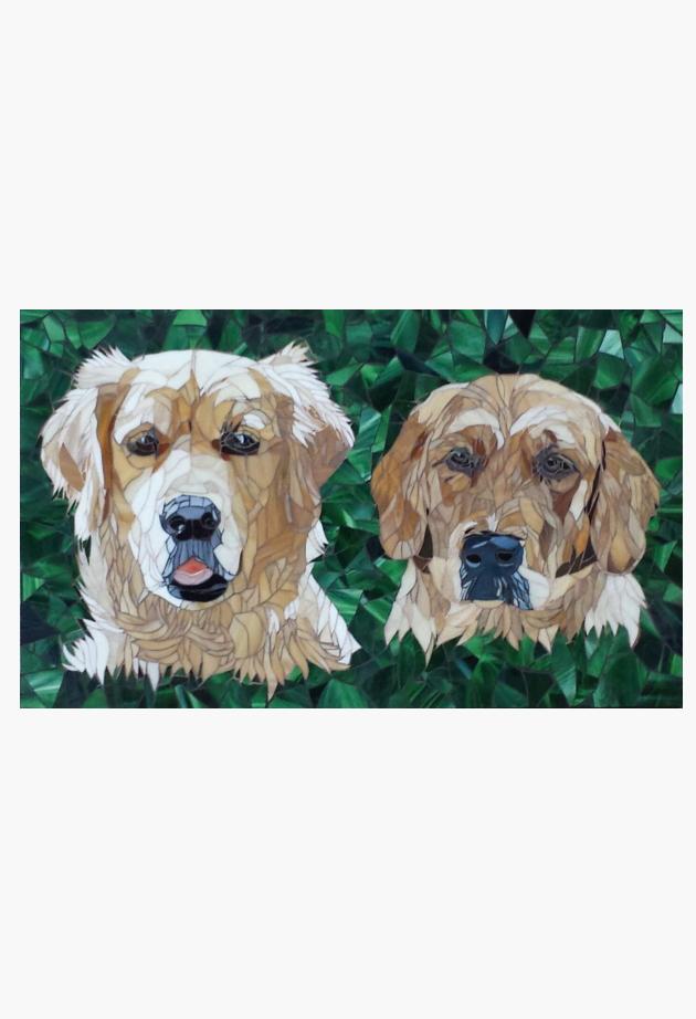 Golden Retrievers - Isa en Cassy